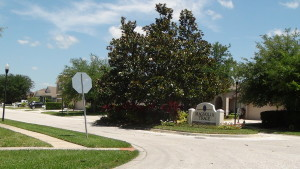 Cross-Creek-New-Tampa-Homes-For-Sale-12