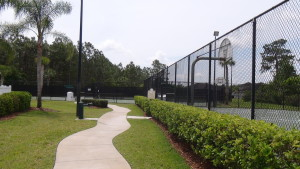 Live Oak Preserve New Tampa Basketball Courts