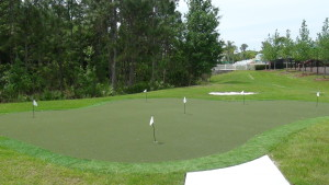 Live Oak Preserve New Tampa Putting Green