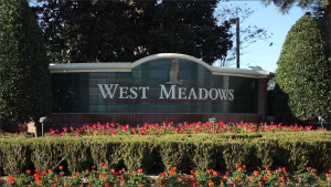New Tampa-West Meadows