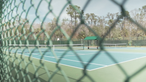 Tampa Palms-Tennis Court