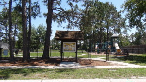 Cross-Creek-New-Tampa-Homes-For-Sale-18