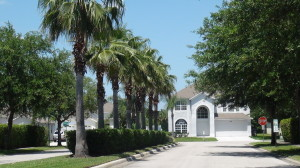 cross creek new tampa homes for sale (2)