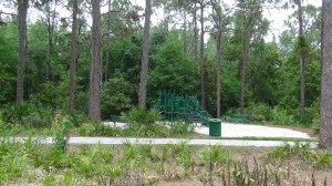Playgrounds in Hunter's Green