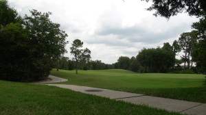 Golf Courses in Hunter's Green