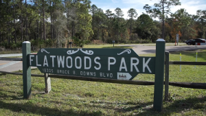 New Tampa-Flatwoods Park